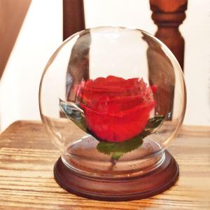 globe glass wood